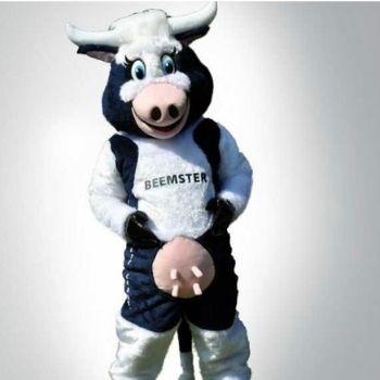 beemster koe kaas looppak mascotte bedazzled